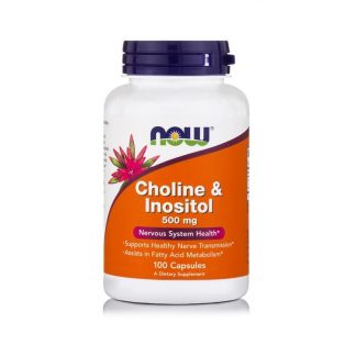 Choline & Inositol 500mg, 100 caps